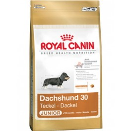 ROYAL CANIN Dachshund Junior, 1.5 кг