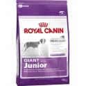 ROYAL CANIN Giant Junior, 4 кг